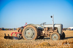 Ferguson 35 at Barton Upon Humber Ploughing Tournament, Worlaby Top, Lincolnshire, October 2018. Photo: Neil Houltby