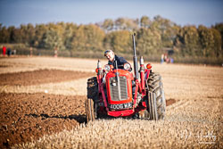 Masey Ferguson MF35 at Barton Upon Humber Ploughing Tournament, Worlaby Top, Lincolnshire, October 2018. Photo: Neil Houltby