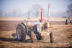 David Brown 780 at Collingham Ploughing Match, South Scarle, Lincolnshire, February 2019. Photo: Neil Houltby