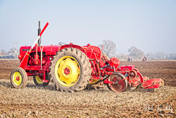 David Brown 950 at Collingham Ploughing Match, South Scarle, Lincolnshire, February 2019. Photo: Neil Houltby