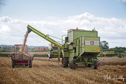 Claas Dominator 175 Combine at Gathering the Harvest, East Bridgeford, Nottinghamshire, August 2019. Photo: Neil Houltby