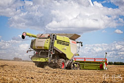 Claas Lexion 760 at Gathering the Harvest, East Bridgeford, Nottinghamshire, August 2019. Photo: Neil Houltby