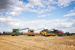 Combine Lineup at Gathering the Harvest, East Bridgeford, Nottinghamshire, August 2019. Photo: Neil Houltby