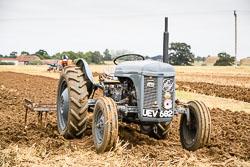 Ferguson TE-20 at WWII Reenactment, Ramsey 1940's Weekend, Ramsey, Cambridgeshire, August 2018. Photo: Neil Houltby